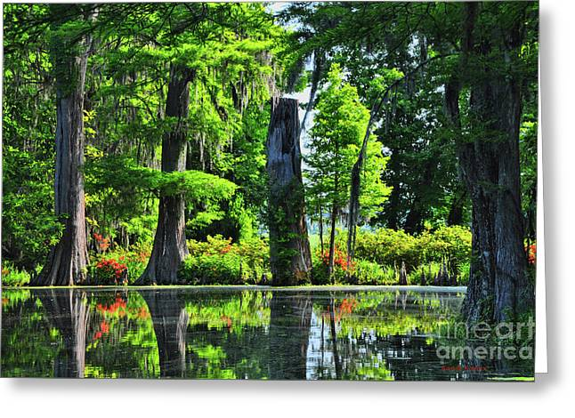 Swamp In Bloom Signed Greeting Card