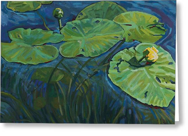 Swamp Lilies Greeting Card by Phil Chadwick
