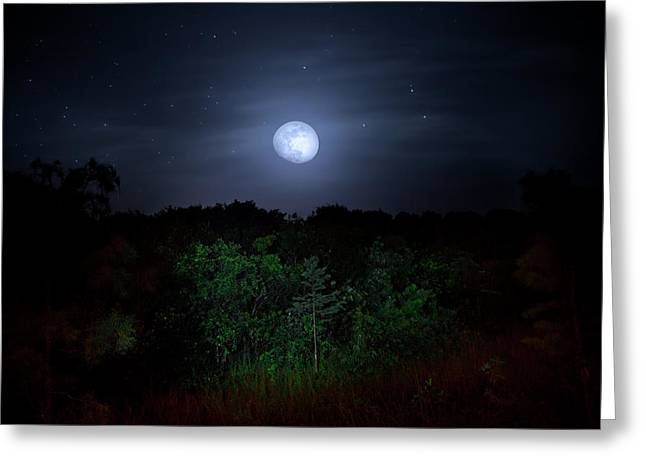 Swamp Moon Greeting Card by Mark Andrew Thomas