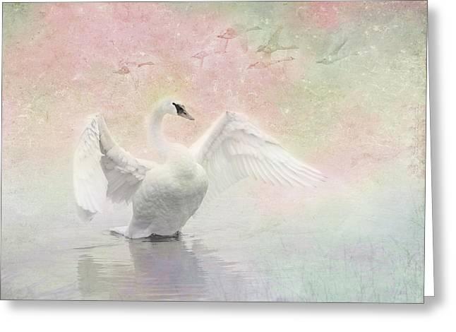 Swan Dream - Display Spring Pastel Colors Greeting Card