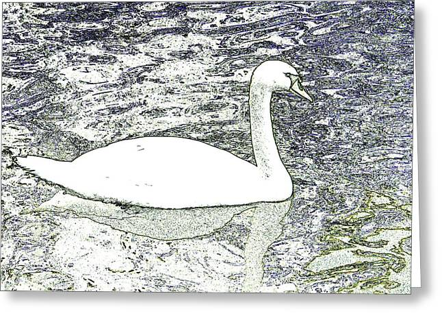 Greeting Card featuring the photograph Swan Sketch by Manuela Constantin