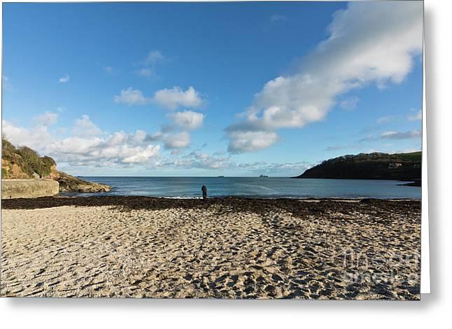 Swanpool Beach Cornwall Greeting Card by Terri Waters