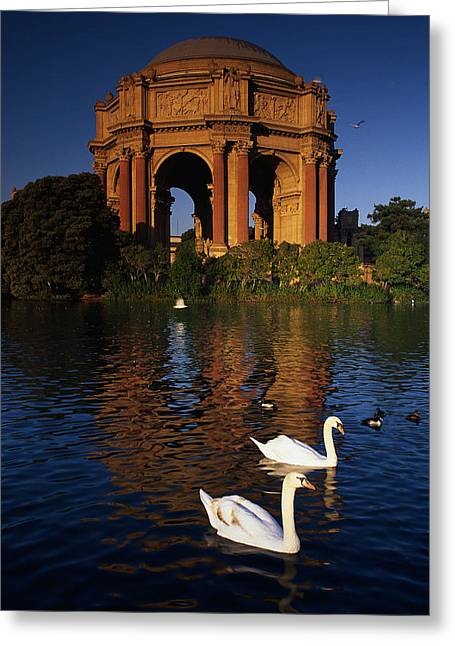 Swans And Palace Of Fine Arts Greeting Card