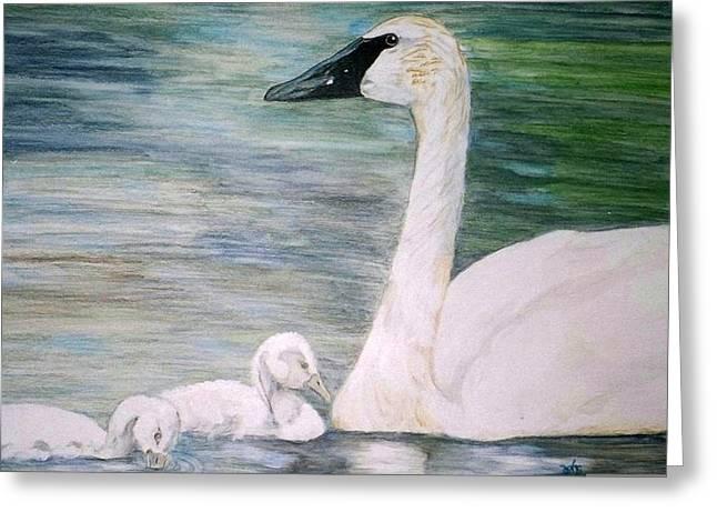 Swans Greeting Card by Debra Sandstrom