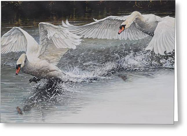 Greeting Card featuring the painting Swans In Dispute by Alan M Hunt