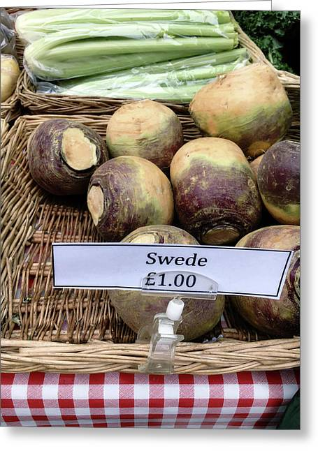 Swede Crop For Sale Greeting Card by Tom Gowanlock