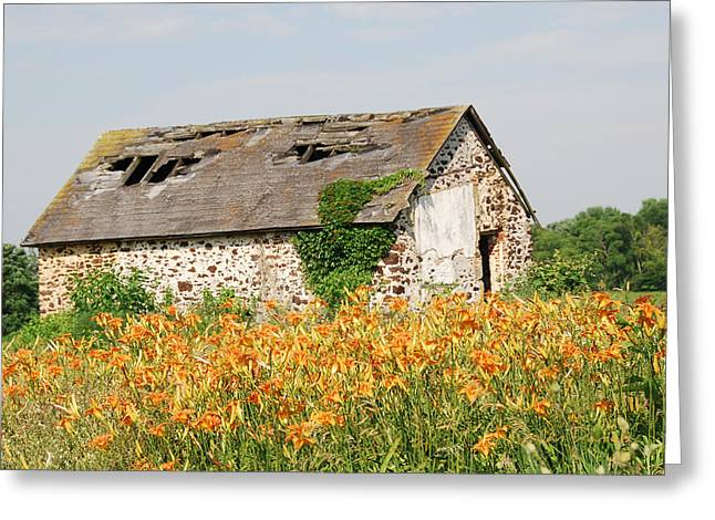 Swede Run Barn  Greeting Card