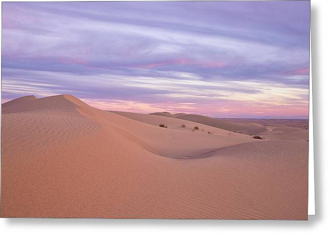 Greeting Card featuring the photograph Sweeping Dunes At Sunset by Patricia Davidson