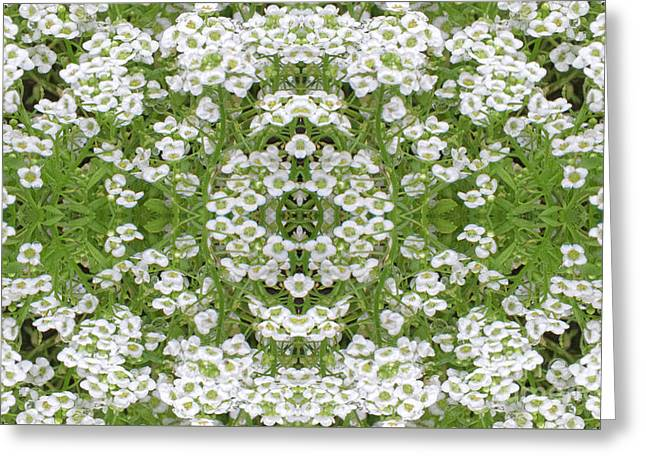 Greeting Card featuring the digital art Sweet Alyssum Abstract by Linda Phelps