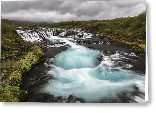 Sweet Blue Greeting Card by Jon Glaser