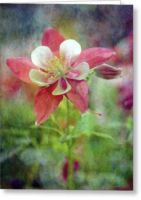 Sweet Columbine 9281 Idp_2 Greeting Card
