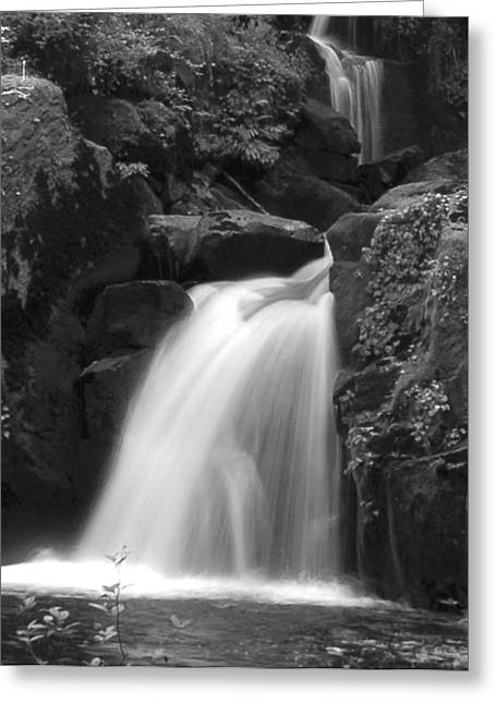 Sweet Cr. Falls Greeting Card by Scott Gould
