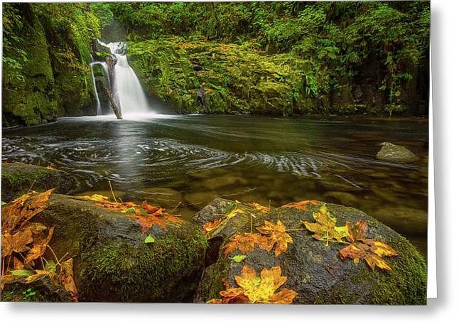 Greeting Card featuring the photograph Sweet Creek Falls In Autumn by Patricia Davidson