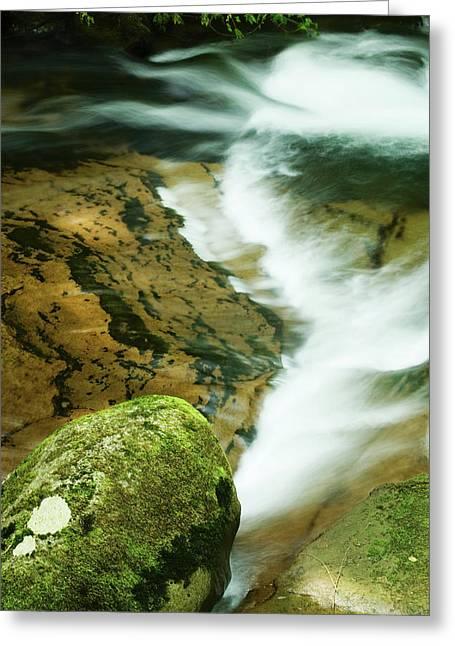 Sweet Creek Greeting Card