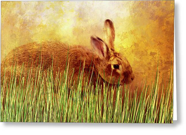 Sweet Little Bunny Face Greeting Card