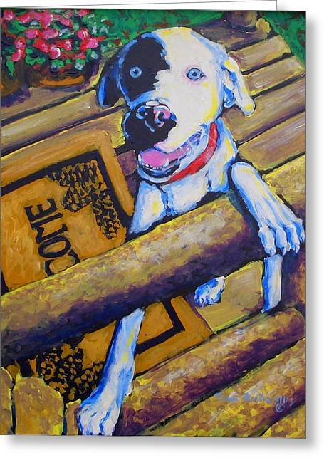 Catahoula Greeting Cards - Sweet Little Mossy Greeting Card by Tami Curtis