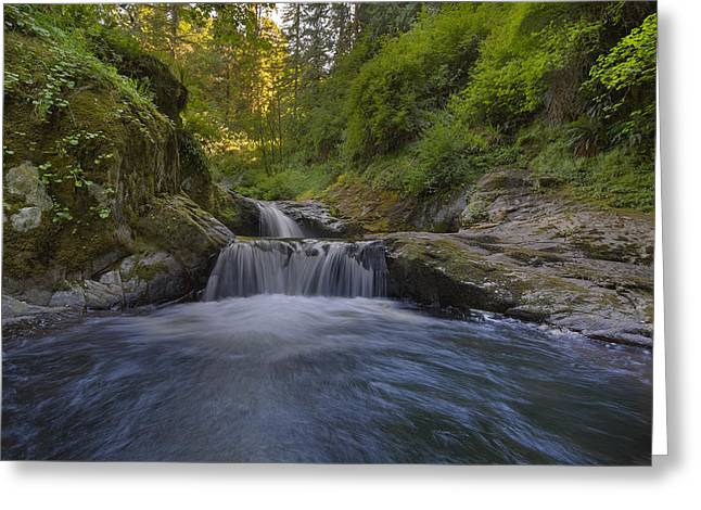 Sweet Little Waterfall Greeting Card by David Gn