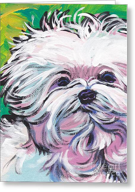 Sweet Maltese  Greeting Card by Lea S