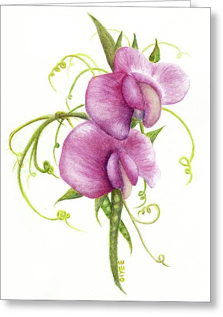 Sweet Pea Greeting Card
