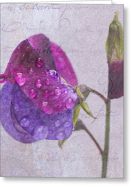 Sweet Pea Raindrops Greeting Card