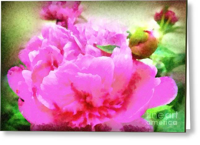 Sweet  Pink Peony Greeting Card by Janine Riley