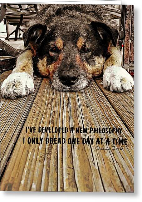 A Dogs Life Quote Greeting Card by JAMART Photography