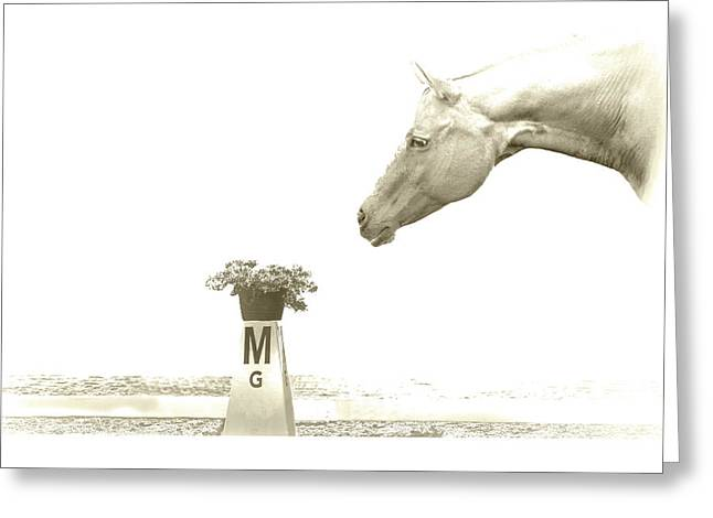 Sweet Scent Of Days Gone By Greeting Card