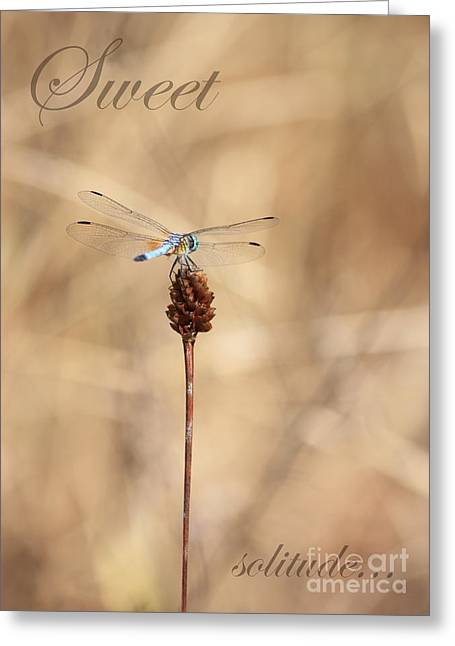 Sweet Solitude Greeting Card by Carol Groenen