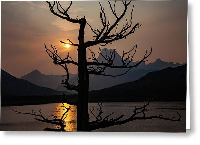 Greeting Card featuring the photograph Swiftcurrent Sunset by Lon Dittrick