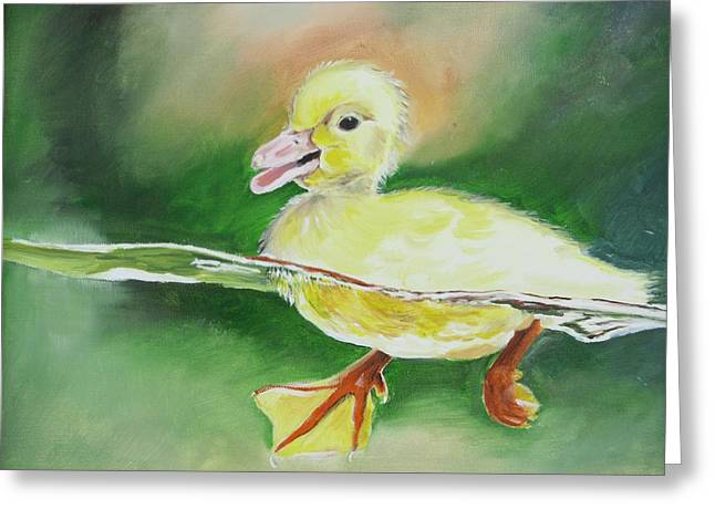 Swimming Duckling Greeting Card