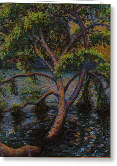 Swimming Tree Greeting Card by Art Nomad Sandra  Hansen