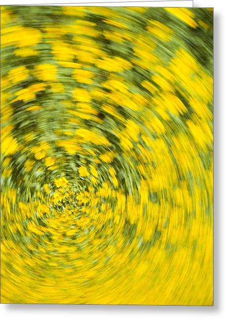 Swirling Flowers Greeting Card
