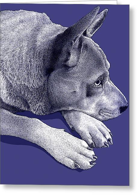 Switchback Roo Greeting Card