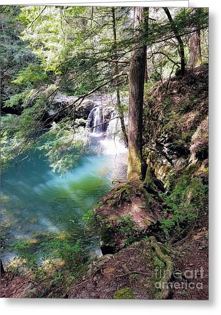 Sycamore Falls Greeting Card