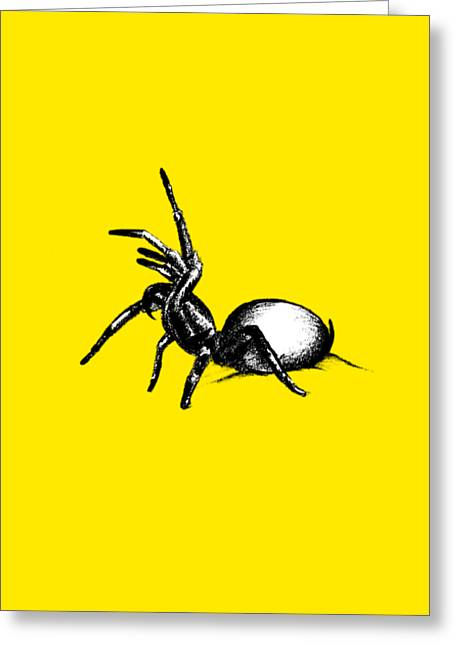 Sydney Funnel Web Greeting Card by Nicholas Ely