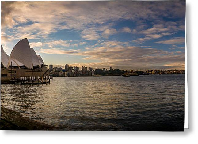 Sydney Harbor Greeting Card by Andrew Matwijec