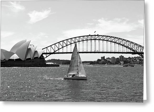 Sydney Harbour No. 1-1 Greeting Card by Sandy Taylor