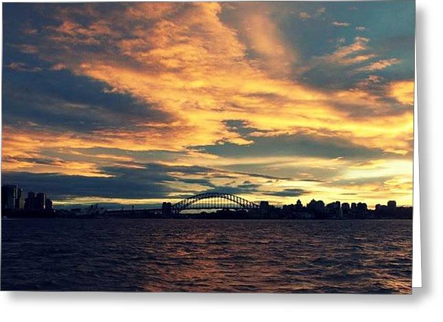 Sydney Harbour At Sunset Greeting Card