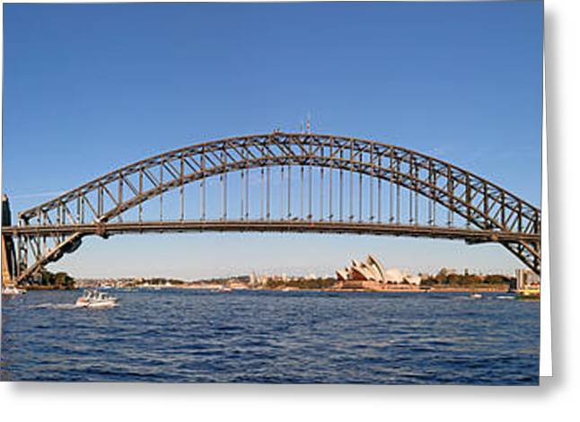 Sydney Harbour Panorama Greeting Card by Nicholas Blackwell