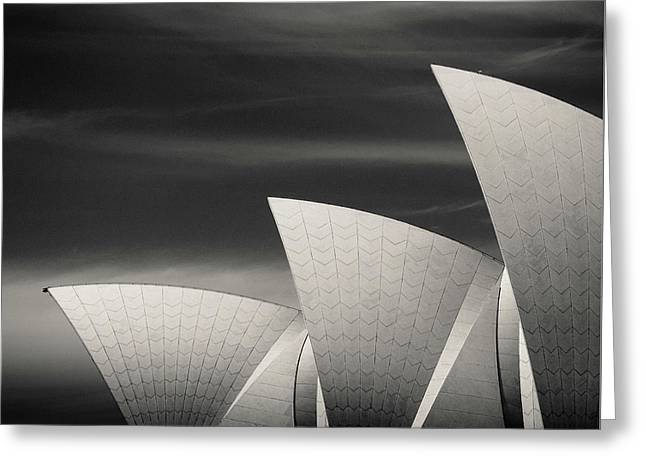Sydney Opera House Greeting Card by Dave Bowman