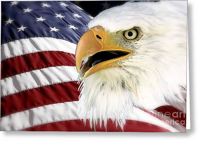 Symbol Of America Greeting Card by Teresa Zieba