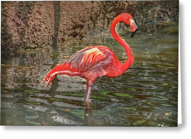 Greeting Card featuring the photograph Symbol Of Florida by Hanny Heim