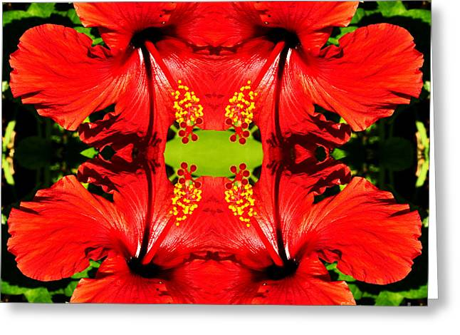 Symmetry Greeting Card by Clayton Bruster