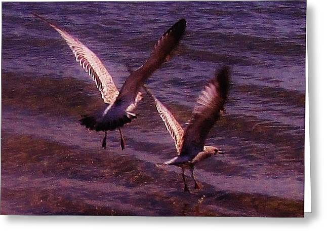 Synchronized Landing Greeting Card