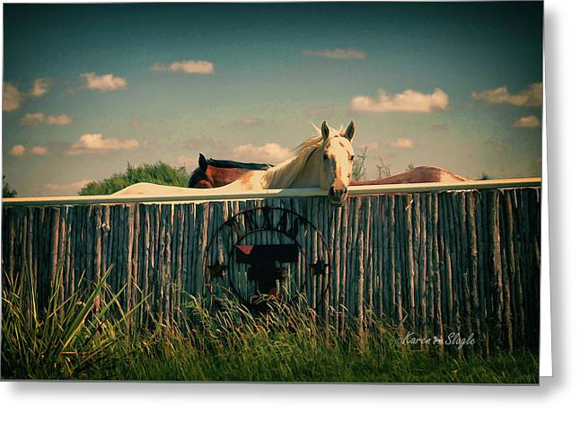T For Texas Greeting Card by Karen Slagle
