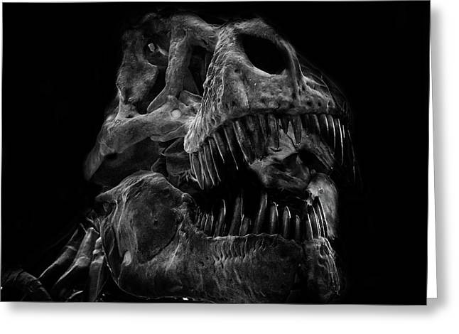 T Rex Skull Greeting Card by Martin Newman
