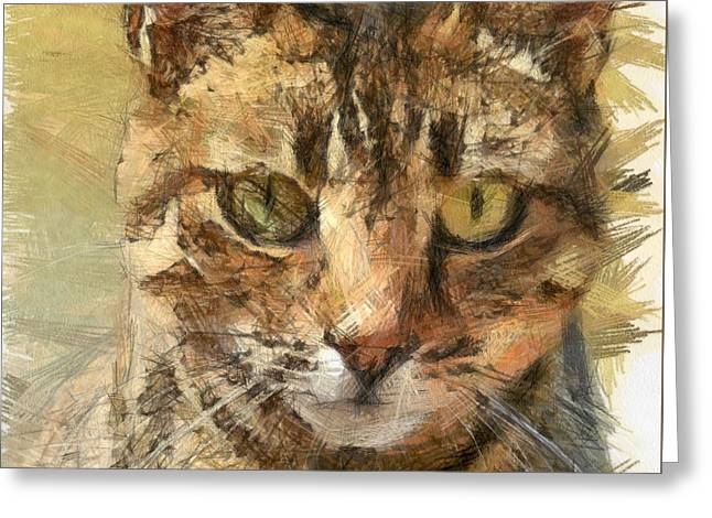 Tabby Cat Greeting Card by Tracey Harrington-Simpson