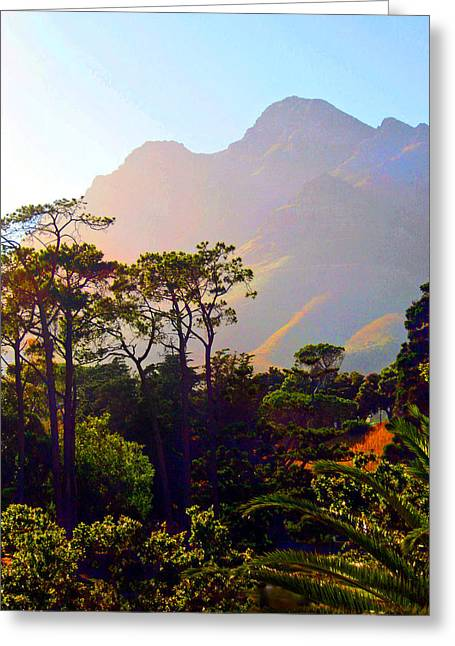 Table Mountain 2 Greeting Card by Michael Durst
