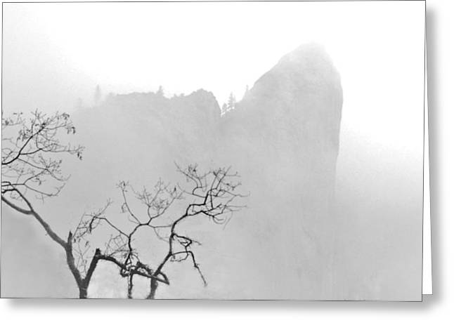 Taft Point In Mist Greeting Card by Josephine Buschman