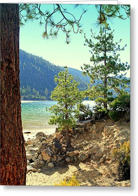 Tahoe Pines Greeting Card by Lynn Bawden